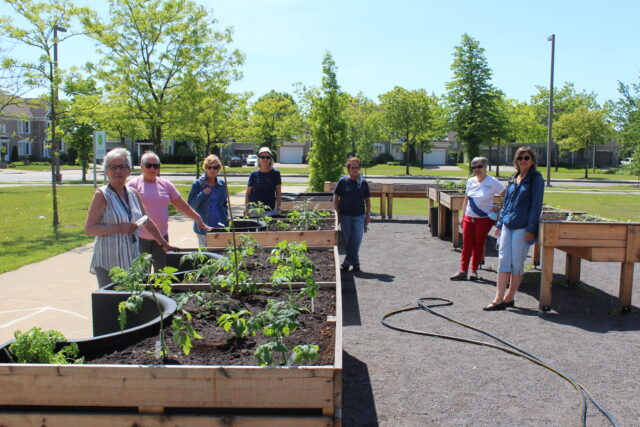 Jardin communautaire gratuit